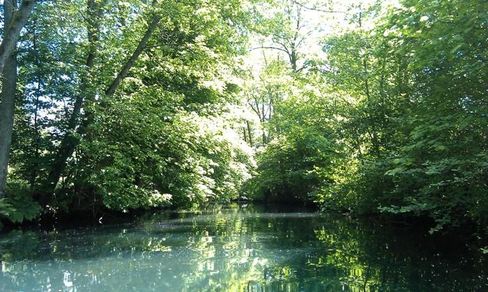 26. Kajaki. Rzeka Radew od Niedalina